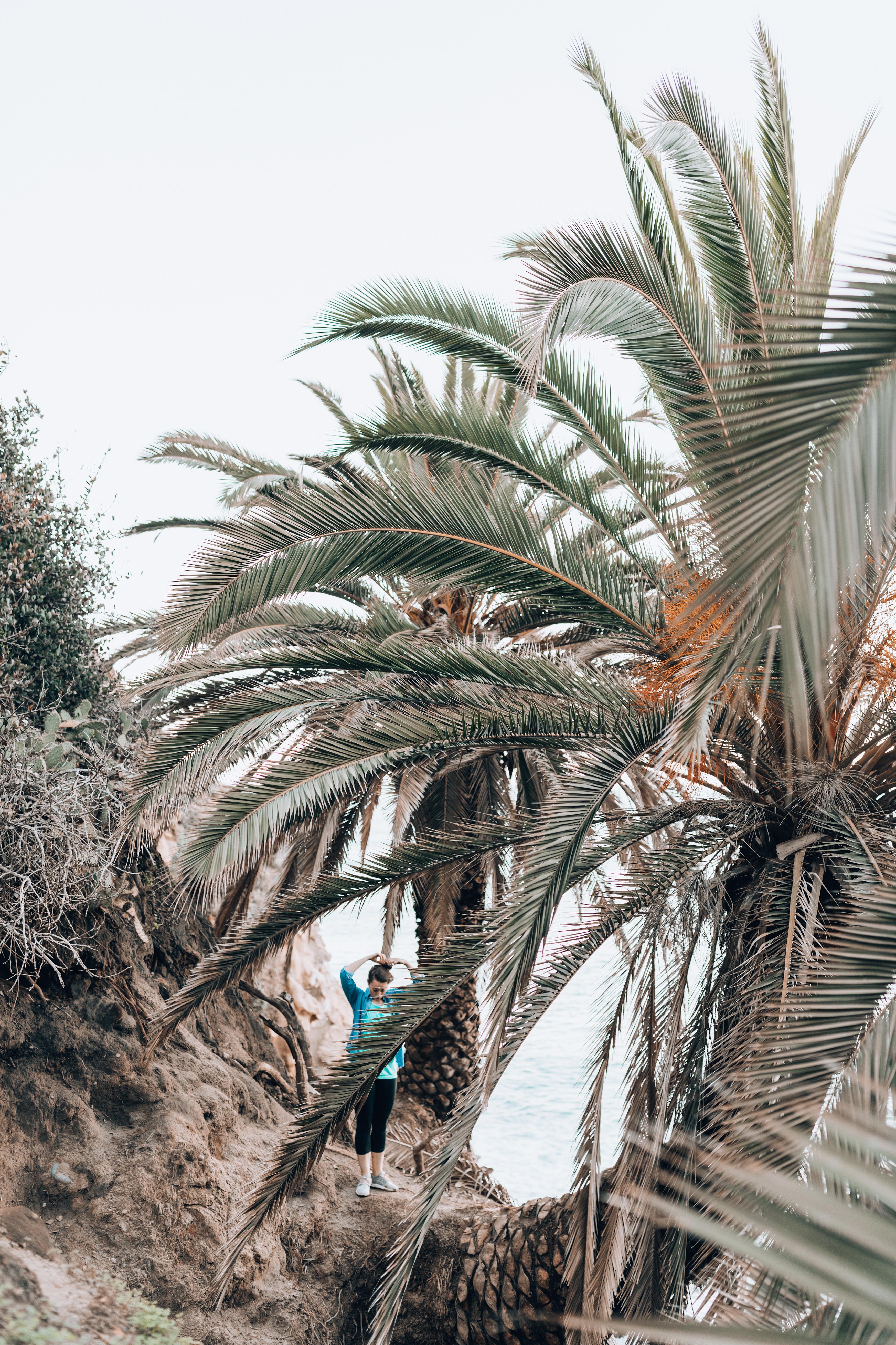 La Jolla Coves San Diego
