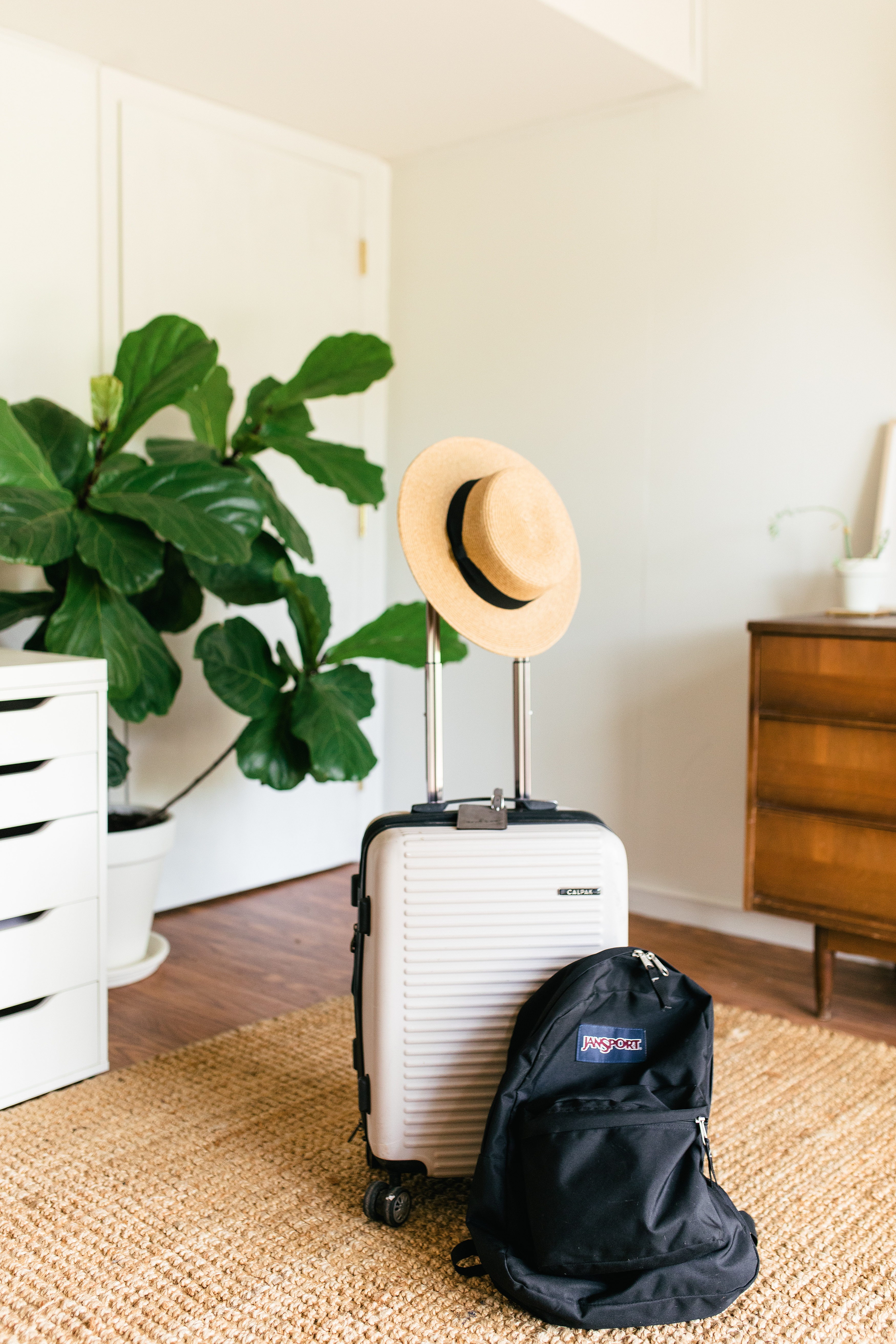suitcase and backpack in room with plant in the background